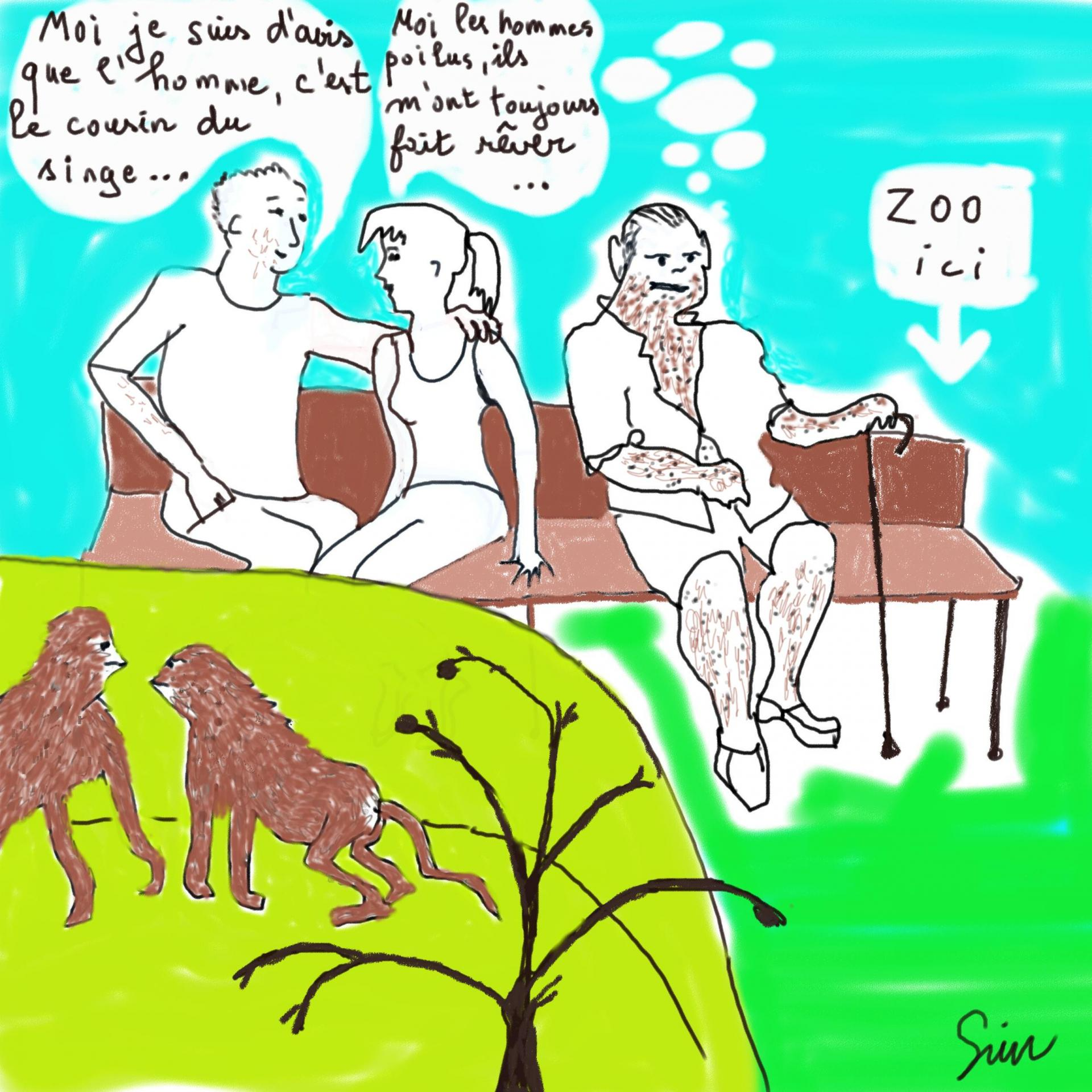 Bd zoo singes
